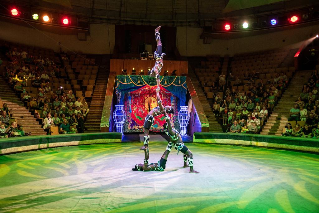 артисты цирка никулина фото фото квинтэссенция