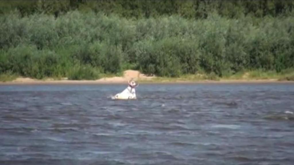 лодки для рыбалки вятские поляны