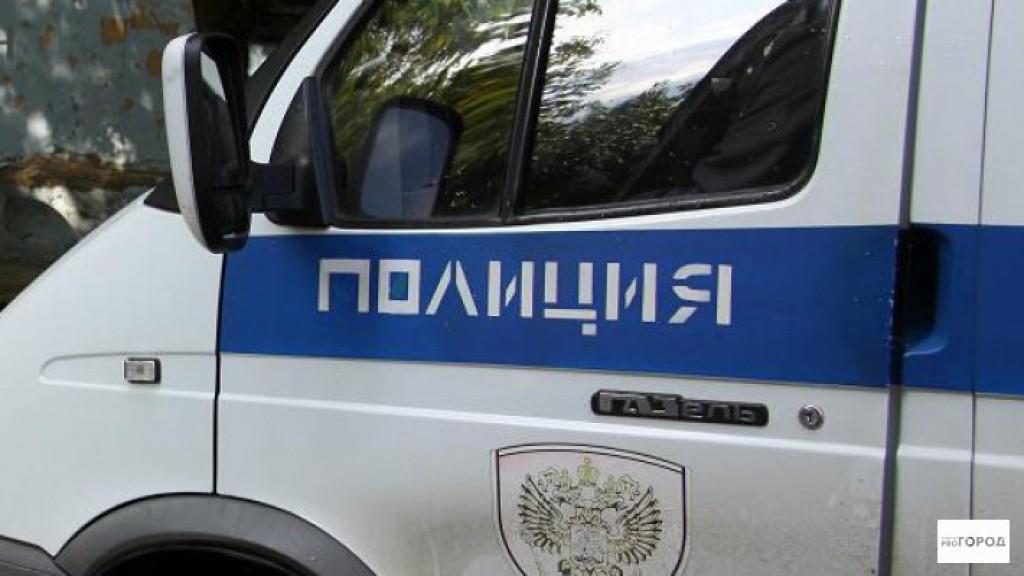 Кировчане стащили из авто 42 килограмма свинины