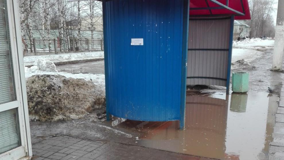 В Кирове остановку переставили с брусчатки в лужу