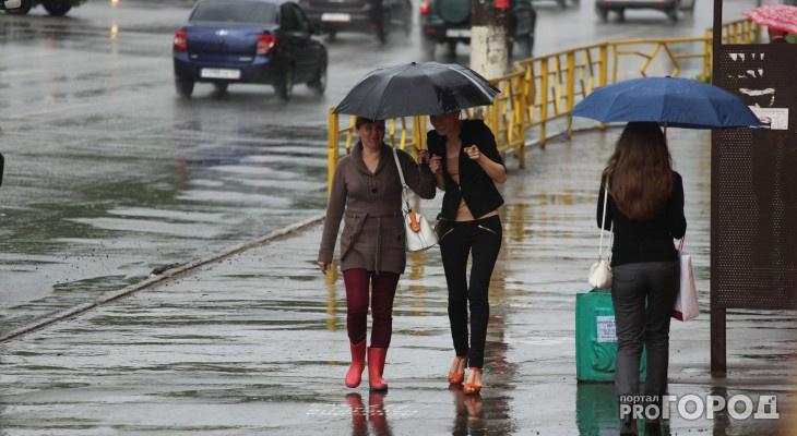 МЧС опубликовало прогноз погоды в Кирове на понедельник