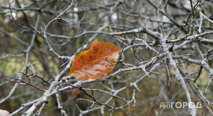 В МЧС рассказали о погоде в Кировской области на вторник