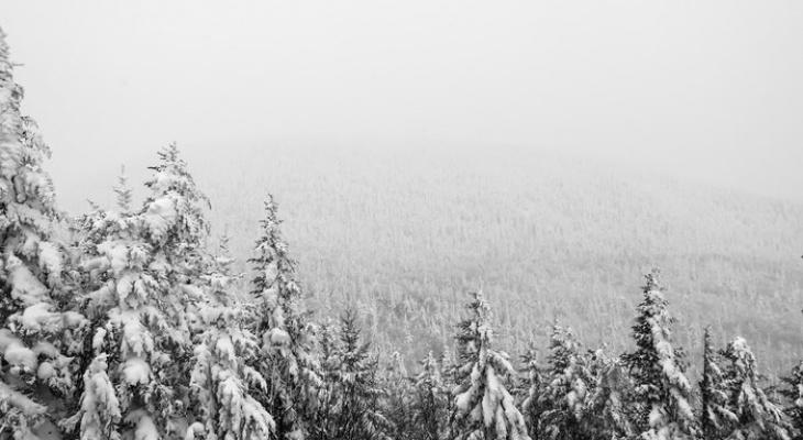 В ближайшие дни на Кировскую область обрушатся сильные снегопады
