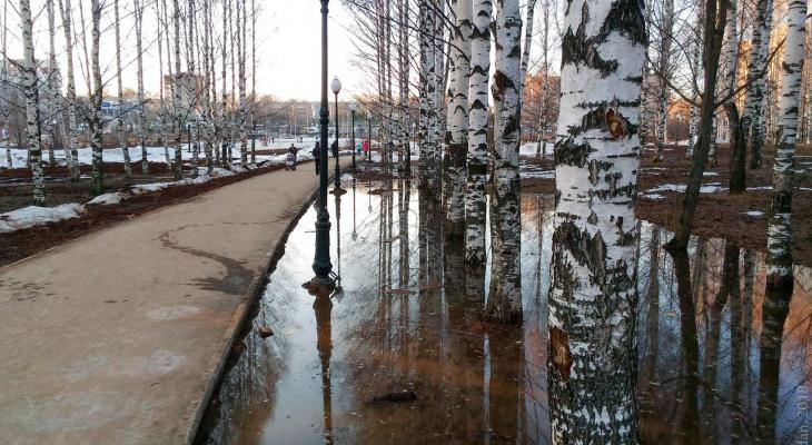 В администрации обещали решить все проблемы Кочуровского парка