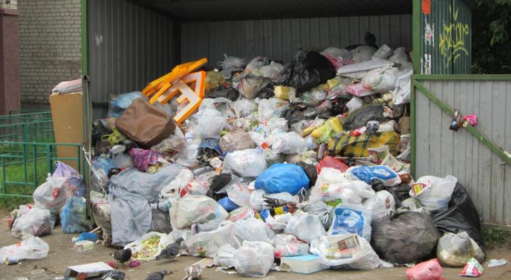 Коммунальщики объяснили, почему в Кирове не убирают контейнеры с мусором
