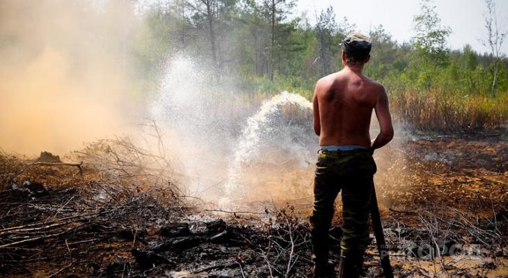 МЧС объявило о чрезвычайной опасности пожаров на юго-западе Кировской области