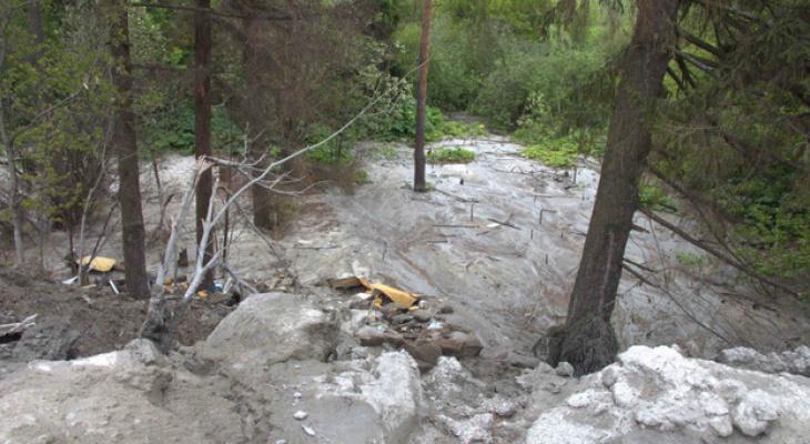 В Кирове неизвестные слили около 360 кубометров бетона в лесу: возбуждено уголовное дело