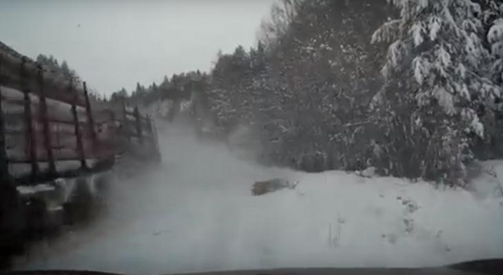 """""""Пункт назначения"""": на кировской трассе из лесовоза перед машиной выпало бревно"""