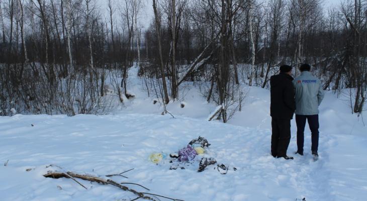 """""""Участок тоже мусорит?"""": в Кирове владельцам земли пришла квитанция за вывоз мусора"""