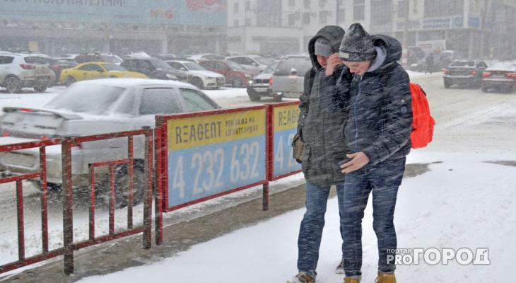 Арктические вторжения, снегопады и резкие потепления: синоптики рассказали, каким будет конец февраля в Кирове