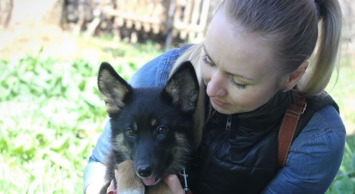 """""""Я не сдержалась и заплакала, потому что поняла, что собака слепая"""": девушка-астматик помогает животным"""