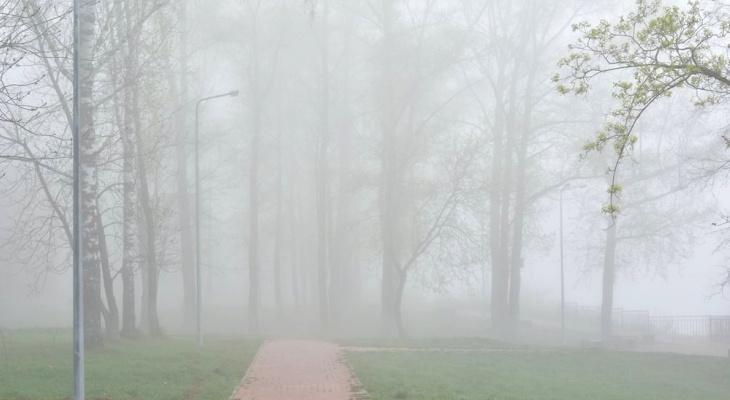 Утром в среду Киров накрыл радиационный туман