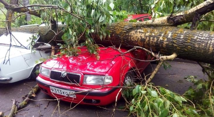 «Летающий» батут, сорванные крыши и падающие на людей деревья: по Кирову прошел ураган