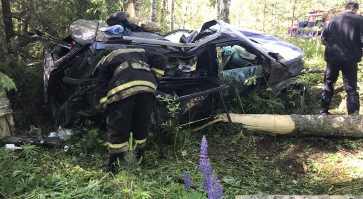 В Кировской области кроссовер вылетел в кювет: пострадали двое детей