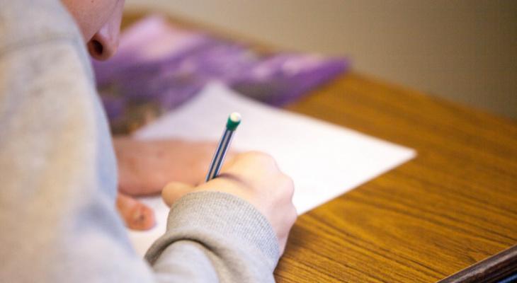 В Кировской области в июне к работе приступили 1500 школьников