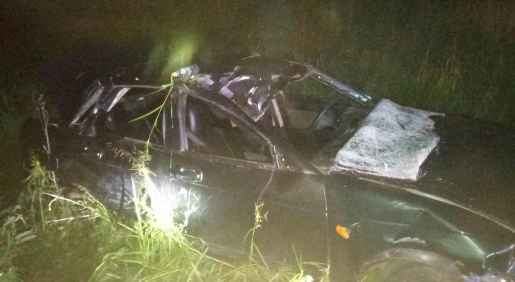 На трассе «Вятка» «Приора» наехала на лося: в ДТП пострадали двое детей