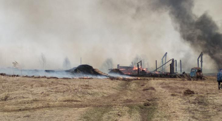 МЧС объявило метеопредупреждение в Кировской области из-за пожаров и ветра