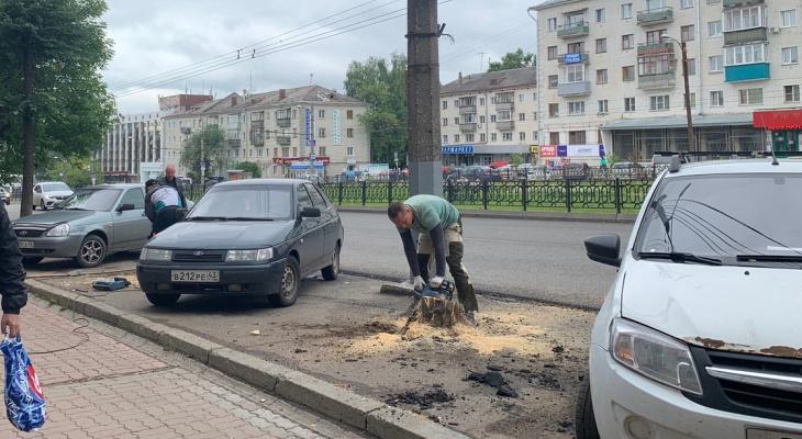 Фото дня: на Октябрьском проспекте в Кирове спиливают деревья для парковки