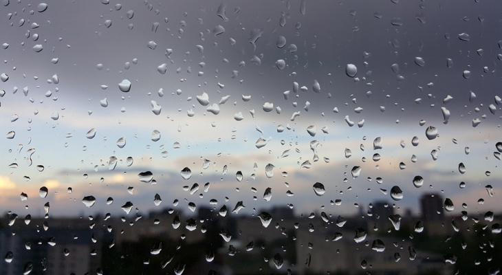 Синоптики подготовили прогноз погоды в Кирове на вторую неделю июля