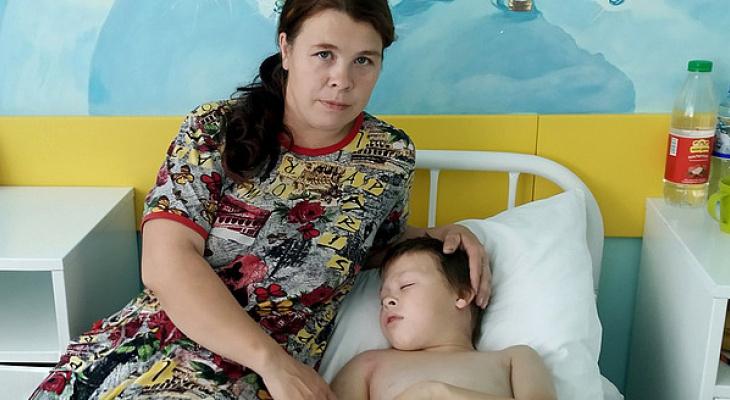 В Кирове спасли ребенка, которого укусила ядовитая змея