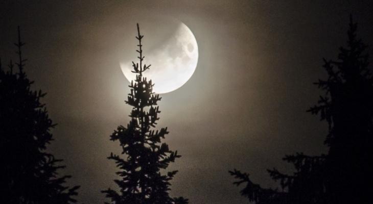 10 ярких фото лунного затмения в Кировской области