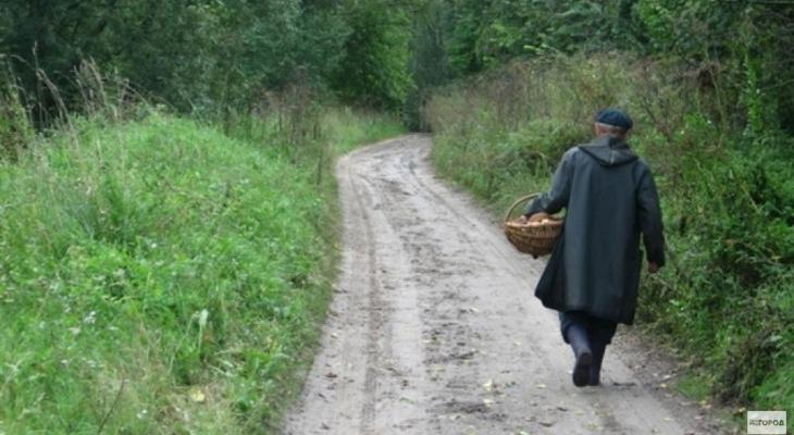 В Кировской области пропавшего грибника нашли спустя пять дней