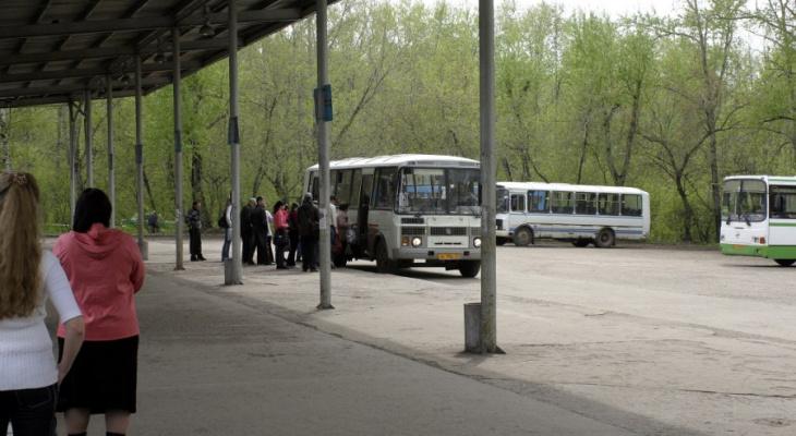 В Кирове среди пассажиров автобусов объявили конкурс на бесплатный проезд