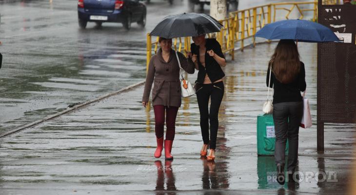 Переменная облачность и грозы: прогноз погоды в Кирове на неделю