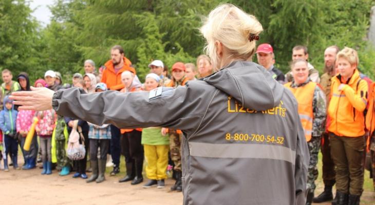 «Все хотят грибов, но мало кто задумывается об опасности»: статистика от волонтеров по пропавшим в лесах