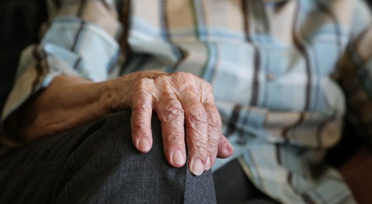 В Кировской области пенсионер совершил кражу, чтобы купить продуктов