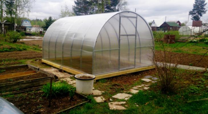 Советы специалиста: какую теплицу поставить осенью для раннего урожая весной