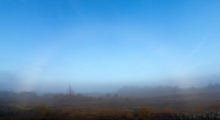 В Кировской области наблюдали редкое оптическое явление