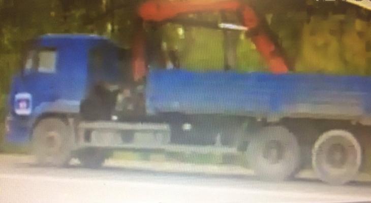 В Дымково неустановленный водитель повредил новый светофор: появились подробности ДТП