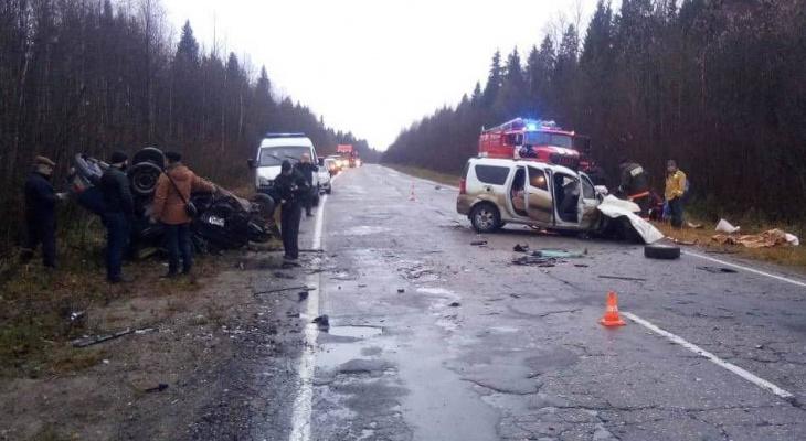 Кировчанин с крокодилом в салоне авто разбился в ДТП