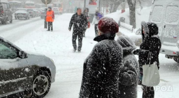 Синоптики рассказали, насколько холодно будет в Кирове на следующей неделе