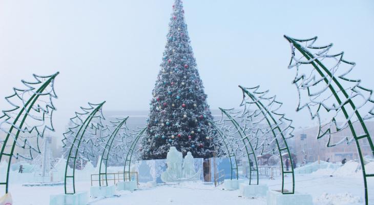 В администрации рассказали, когда состоится открытие главной новогодней елки в Кирове