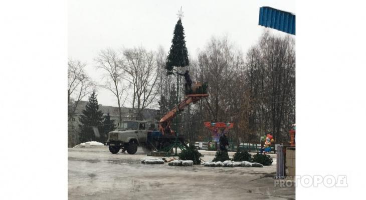 Фото дня: в Кирове впервые ставят 10-метровую елку у цирка