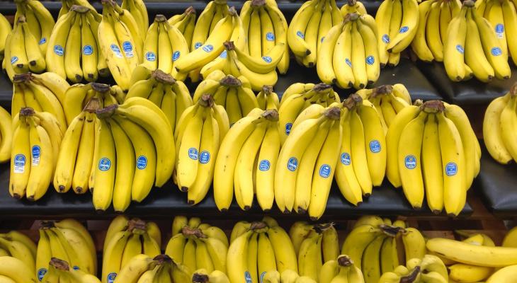 В Новый год без бананов: ввоз фруктов из Эквадора в Россию могут прекратить
