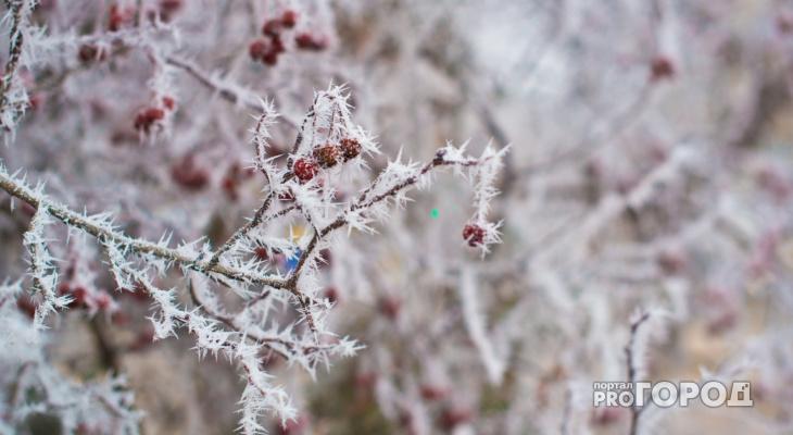 Сильный снегопад: прогноз погоды в Кирове на предстоящую рабочую неделю