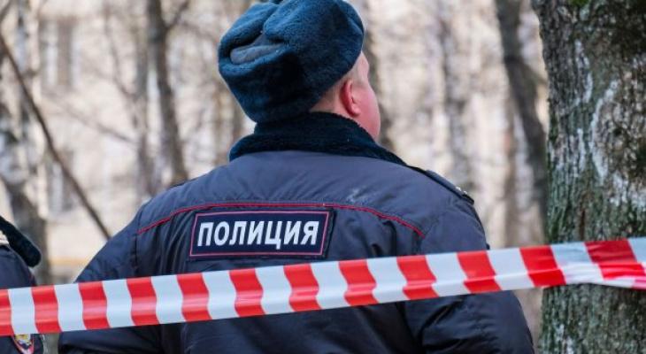 Брошенный на цепи пес и найденное тело женщины: что обсуждают в Кирове