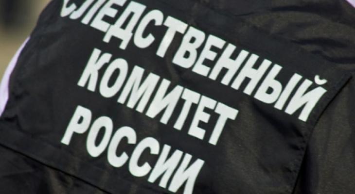 Следком проводит проверку по видеосюжету из-за оскорблений кировского журналиста