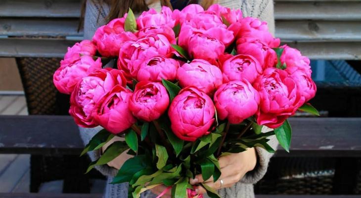 На похороны и день рождения: для чего кировчане скупают пионы в Питере?