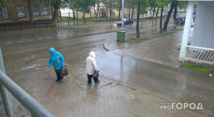 Переменная облачность и отсутствие осадков: известна погода на 1 июля в Кирове