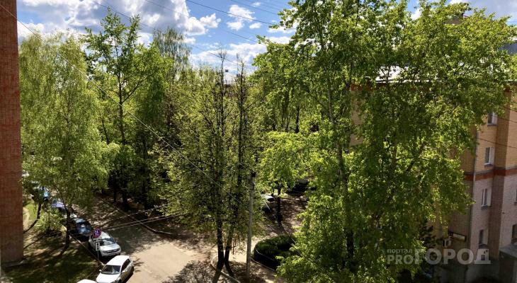 Жара за 30 градусов и грозы: прогноз погоды в Кирове на июль