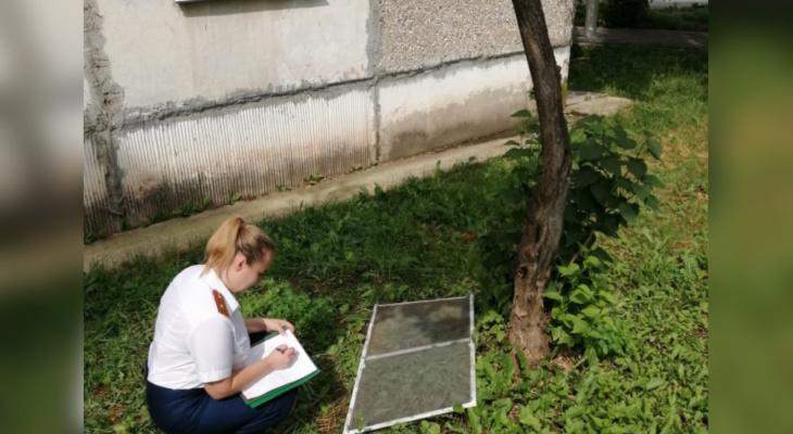 В Кирове полуторагодовалый ребенок выпал из окна на пятом этаже