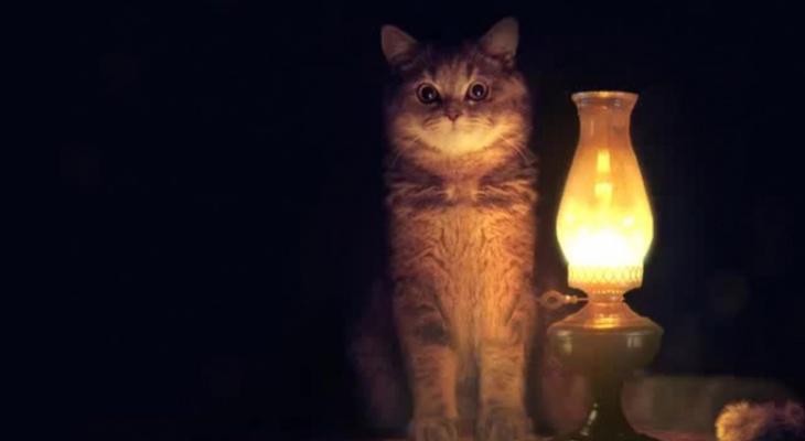 Тысячи кировчан останутся без света 28 июля: список адресов