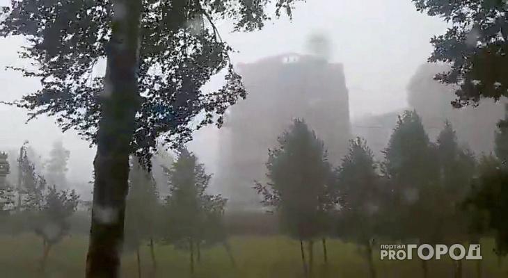 В Кировской области объявлено метеопредупреждение из-за грозы и ветра