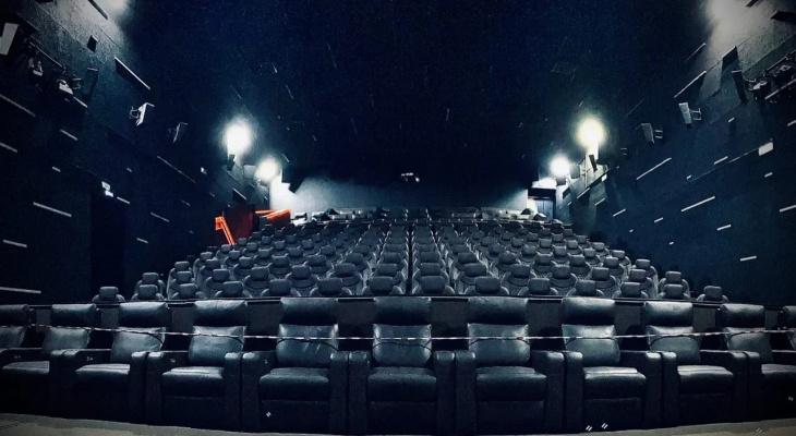 Владельцы кинотеатров региона просят губернатора разрешить им работать