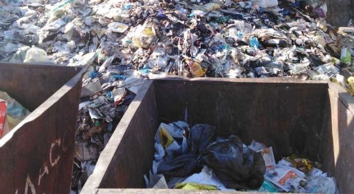 Возбуждено дело на главврача ЦРБ из-за свалки опасных отходов у больницы в Демьяново
