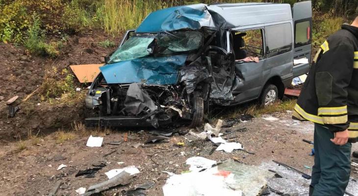 Утром на трассе в Кировской области при столкновении «Газели» и микроавтобуса погибли три человека
